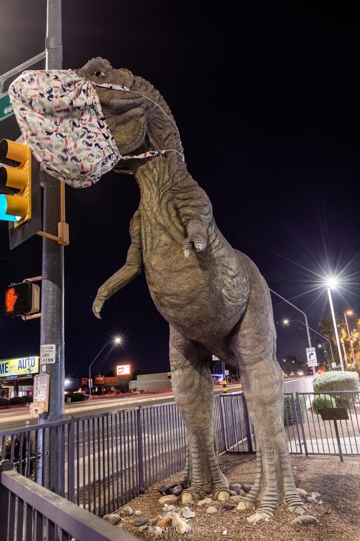 Dinosaur PPE